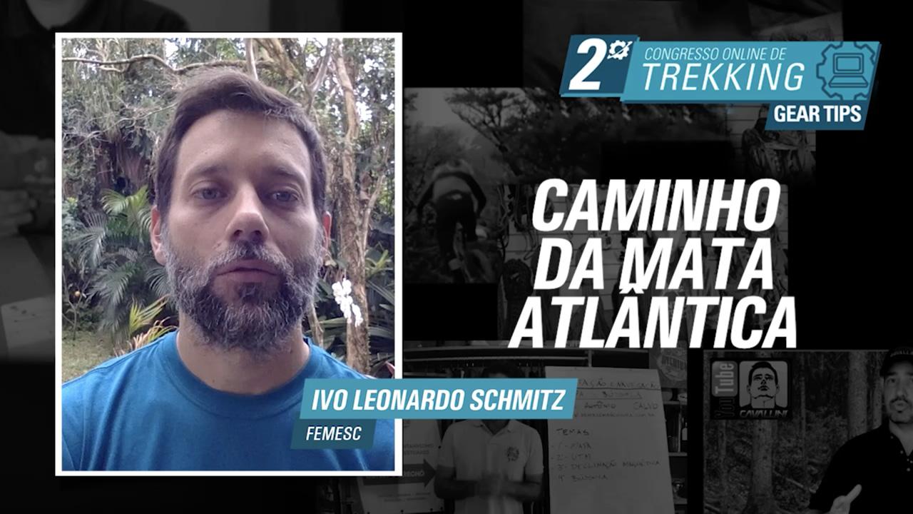 Caminho da Mata Atlântica - Ivo Leo